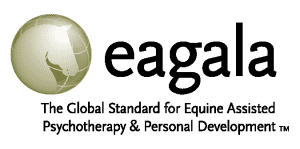 EAGALA Primary H SMALL_hori